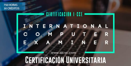 I-CCE: International Certified Computer Examiner